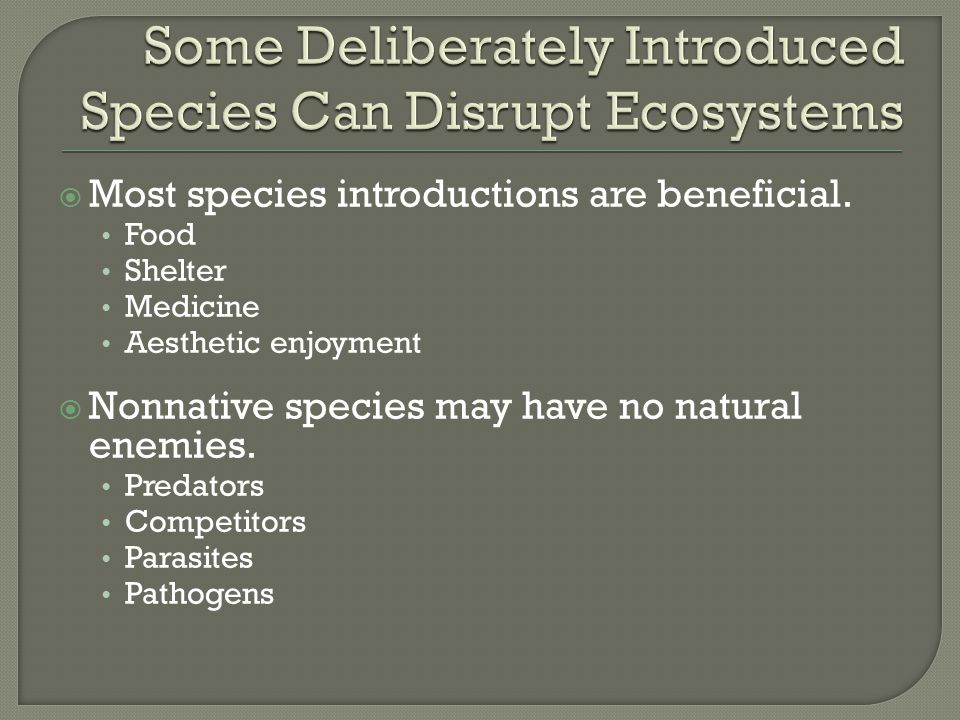 Some Deliberately Introduced Species Can Disrupt Ecosystems