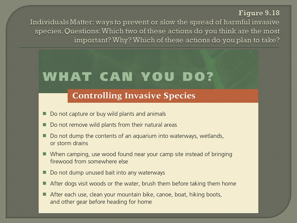 Figure 9.18 Individuals Matter: ways to prevent or slow the spread of harmful invasive species.