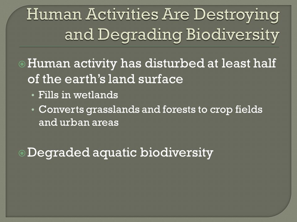 Human Activities Are Destroying and Degrading Biodiversity