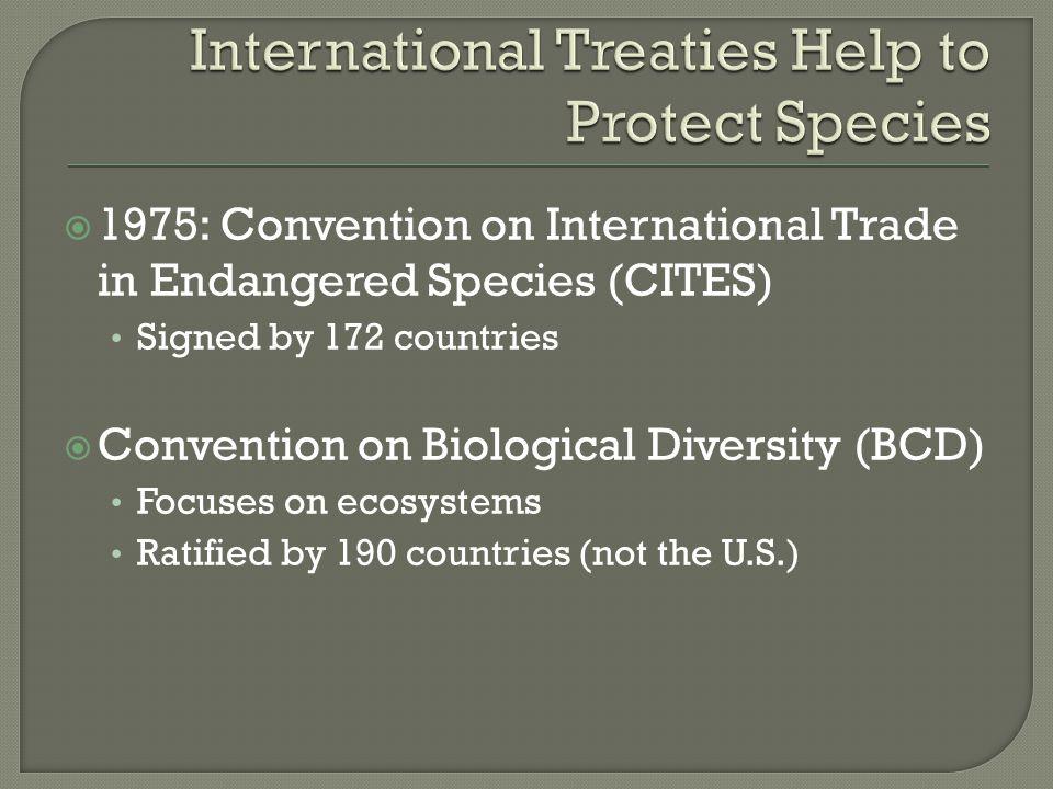 International Treaties Help to Protect Species