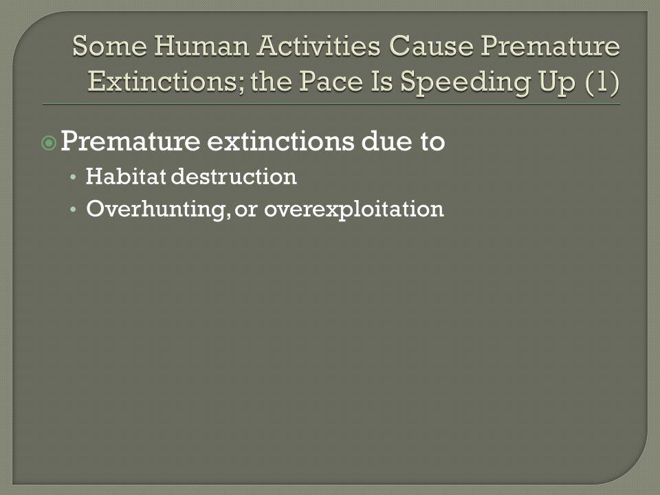 Premature extinctions due to