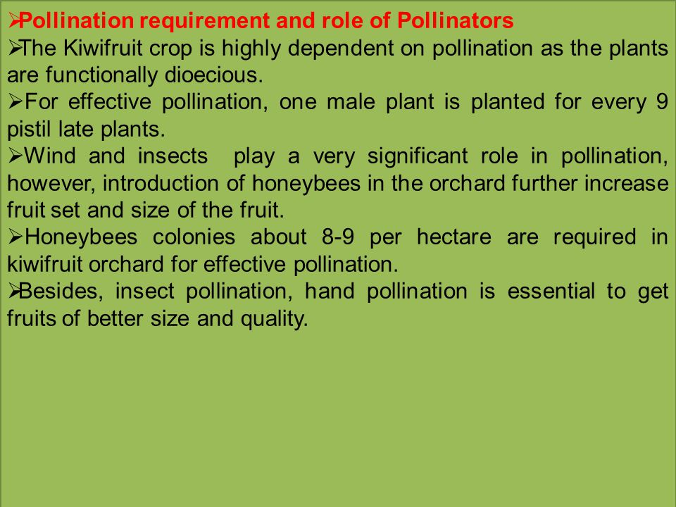 Pollination requirement and role of Pollinators