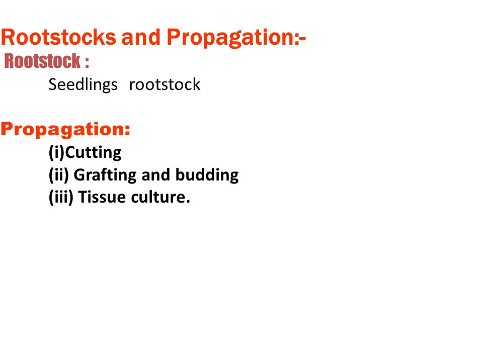 Rootstocks and Propagation:-