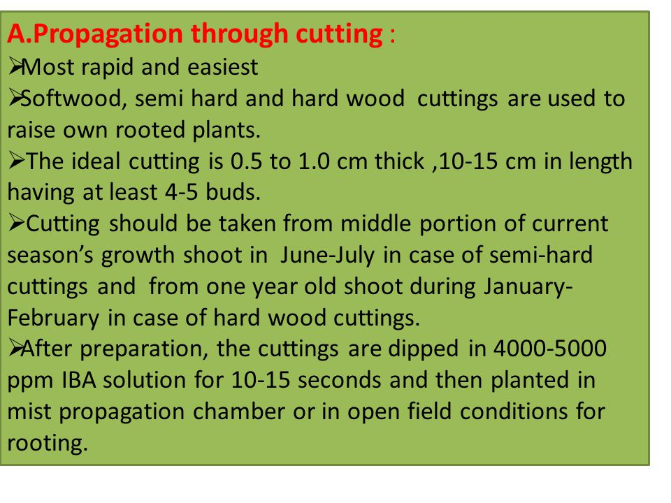 A.Propagation through cutting :