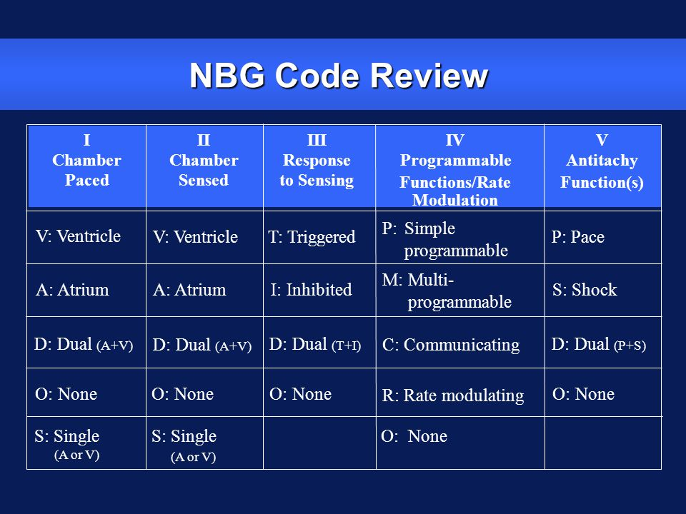 NBG Code Review P: Simple programmable V: Ventricle V: Ventricle