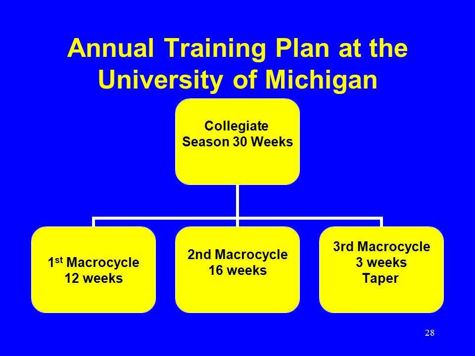 Annual Training Plan at the University of Michigan