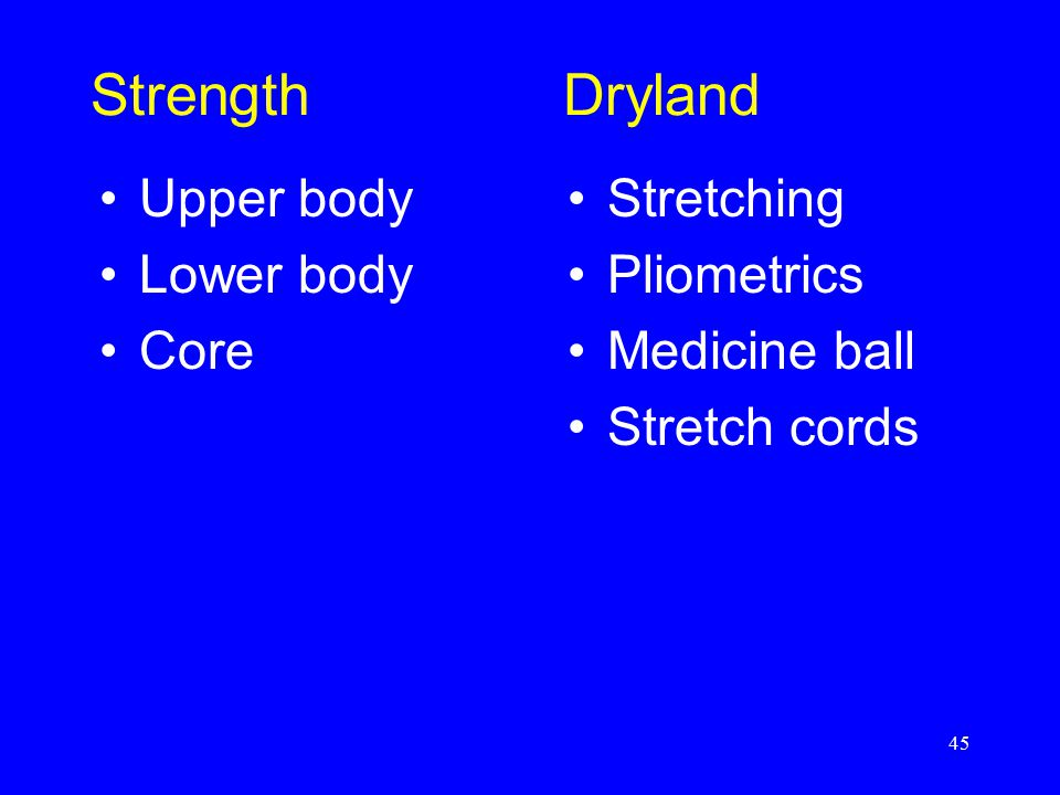Strength Dryland Upper body Lower body Core Stretching Pliometrics