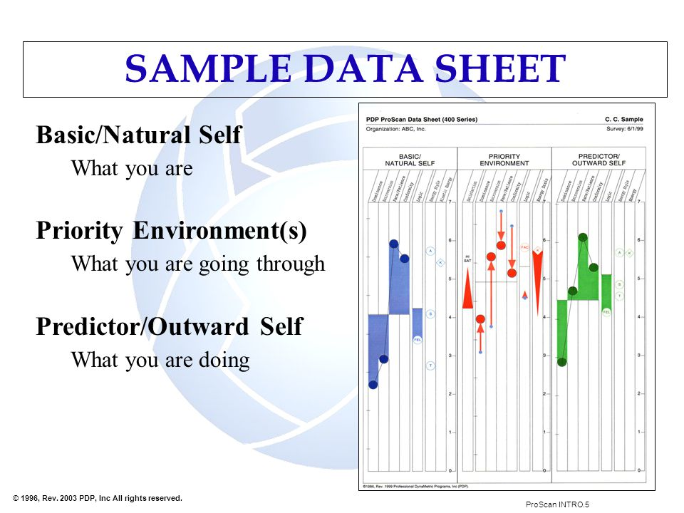 SAMPLE DATA SHEET Basic/Natural Self What you are