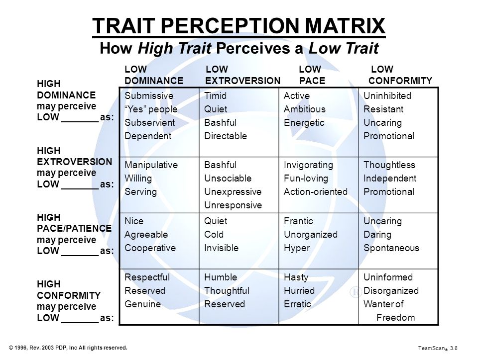 TRAIT PERCEPTION MATRIX How High Trait Perceives a Low Trait