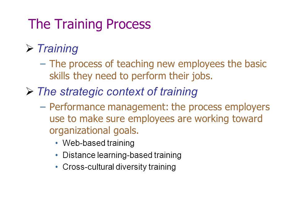 The Training Process Training The strategic context of training