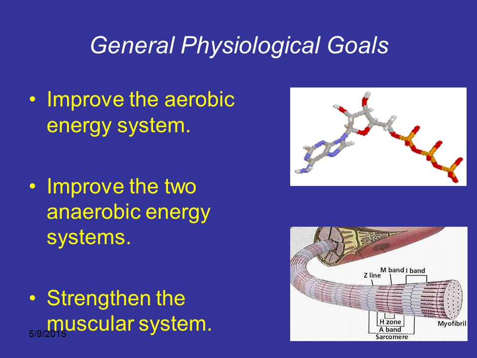General Physiological Goals