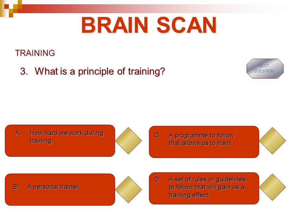 BRAIN SCAN What is a principle of training TRAINING