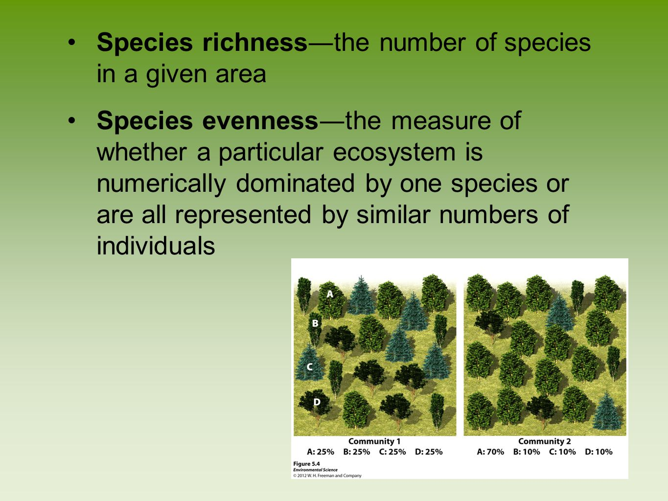 Species richness―the number of species in a given area