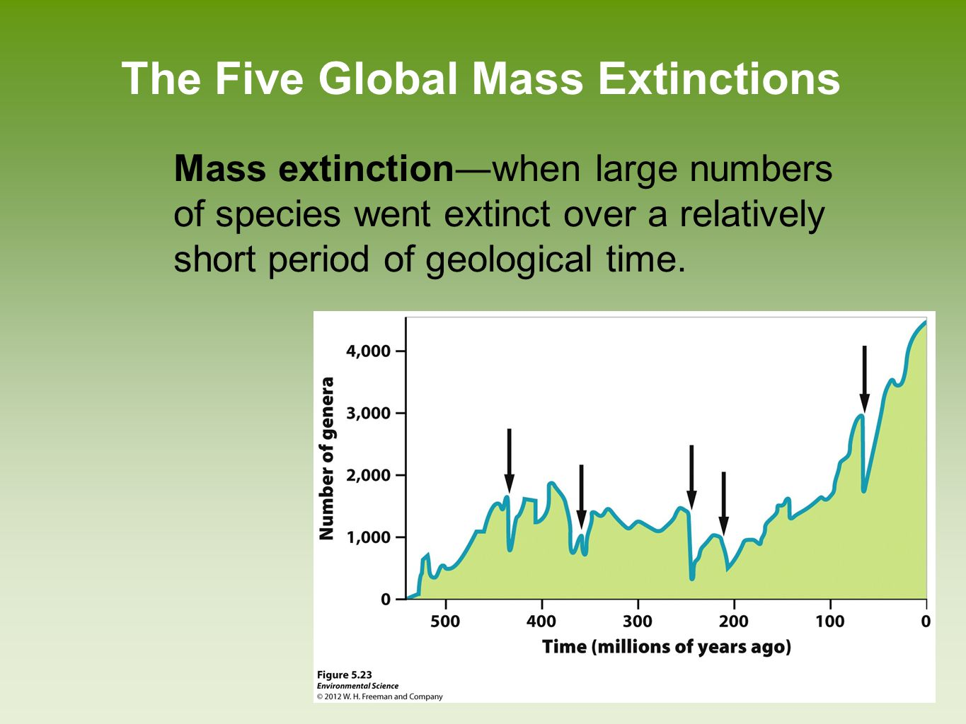 The Five Global Mass Extinctions