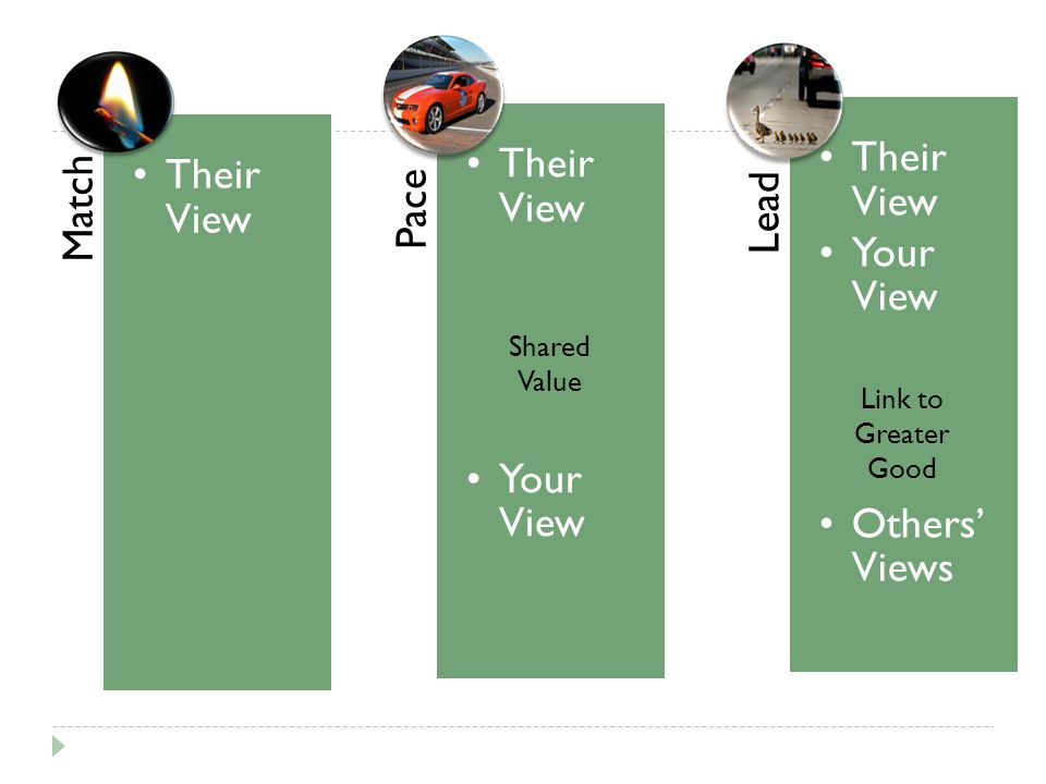 Shared Value Link to Greater Good Match Their View Pace Your View Lead