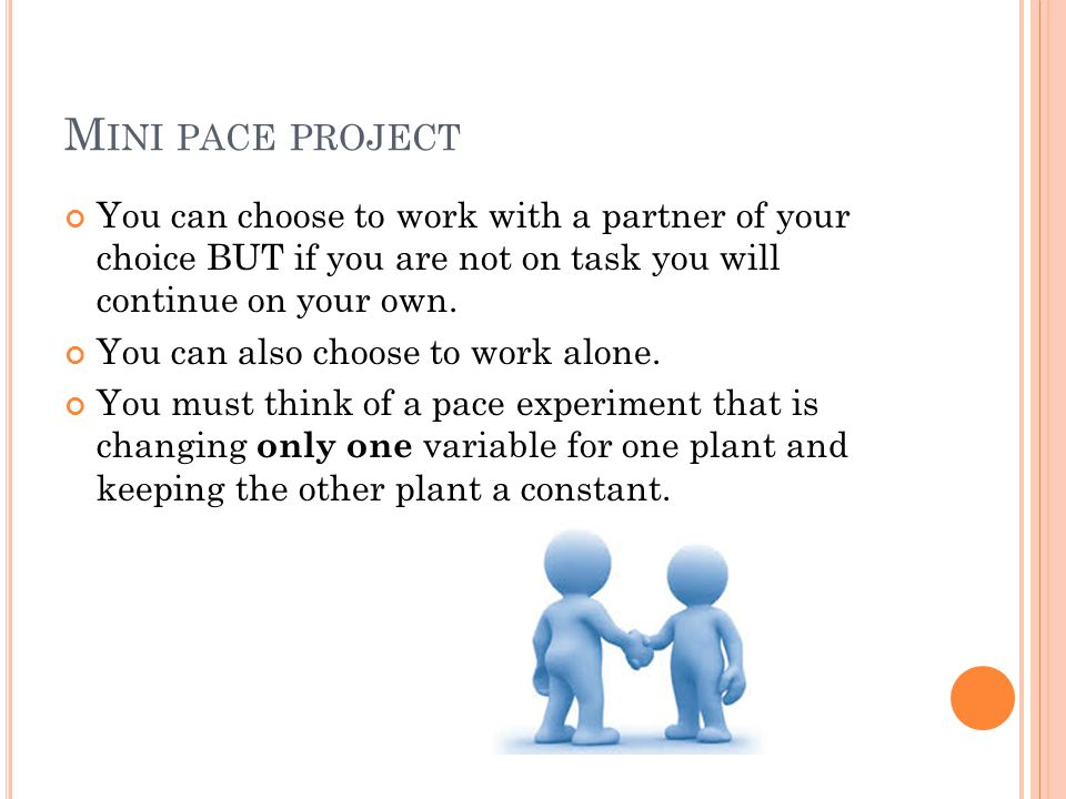 Mini pace project You can choose to work with a partner of your choice BUT if you are not on task you will continue on your own.