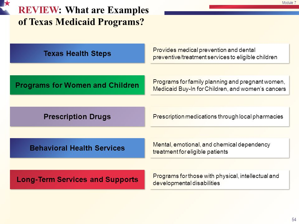 REVIEW: What are Examples of Texas Medicaid Programs