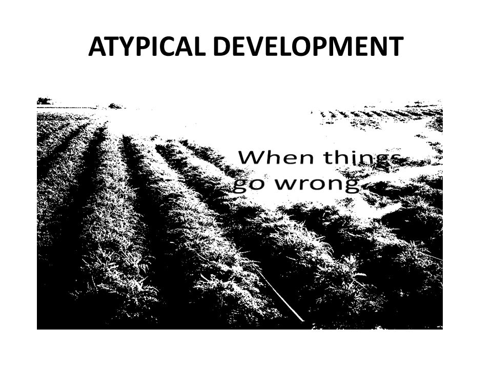 When things go wrong… ATYPICAL DEVELOPMENT Dyspraxia Language Disorder
