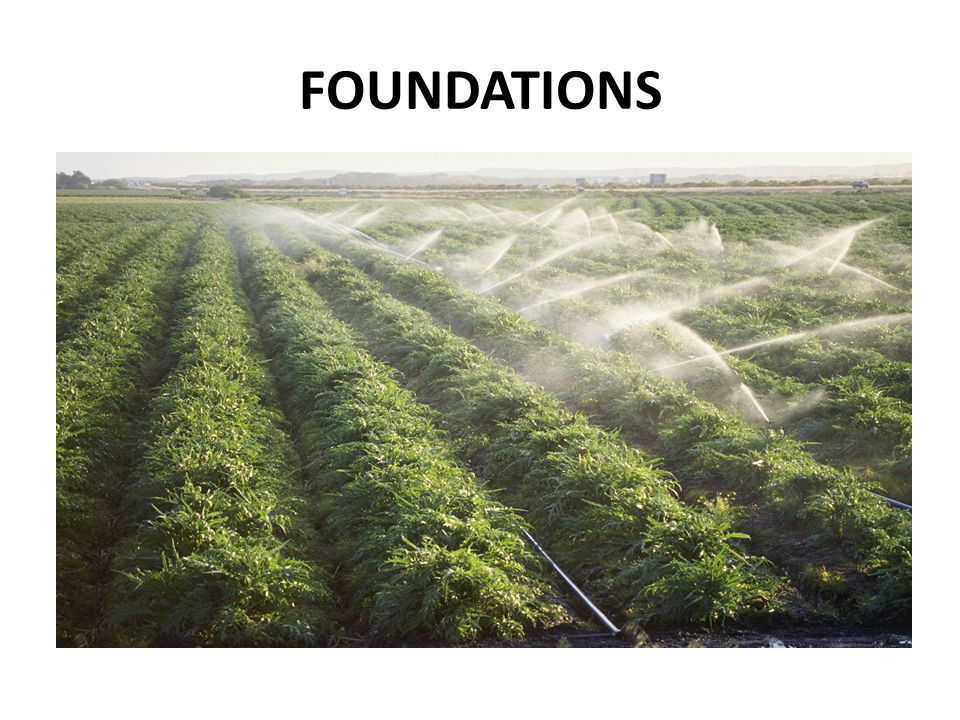 FOUNDATIONS The early stages of development are much like an irrigation system: + water flowing over land for nourishing plants.