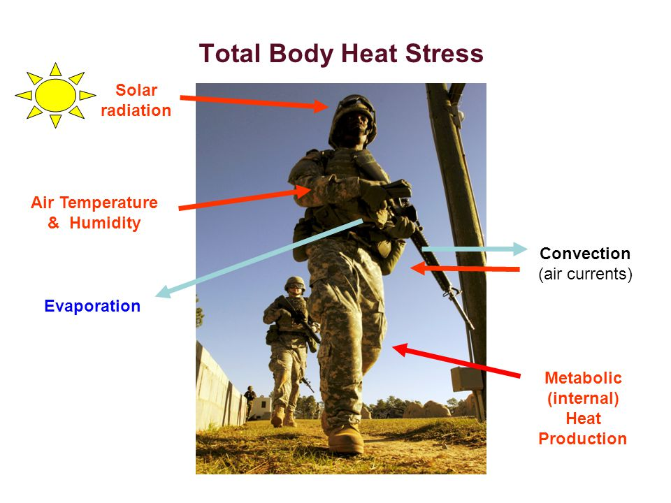 Total Body Heat Stress Solar radiation Air Temperature & Humidity