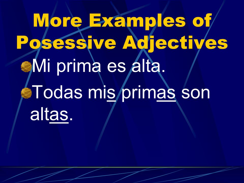 More Examples of Posessive Adjectives