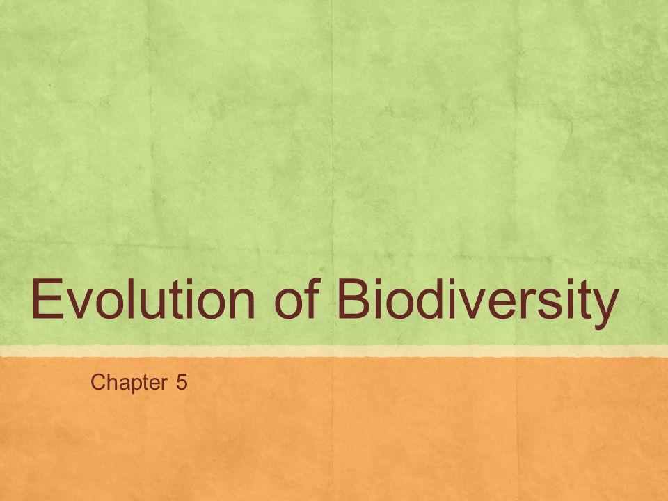 Evolution of Biodiversity