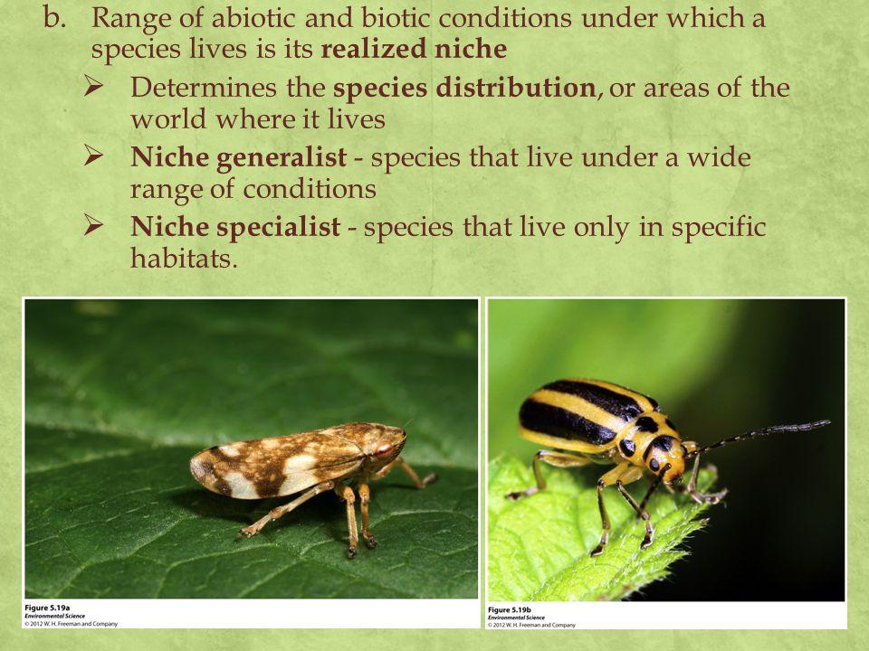 Niche generalist - species that live under a wide range of conditions