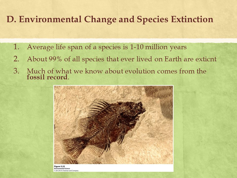 D. Environmental Change and Species Extinction