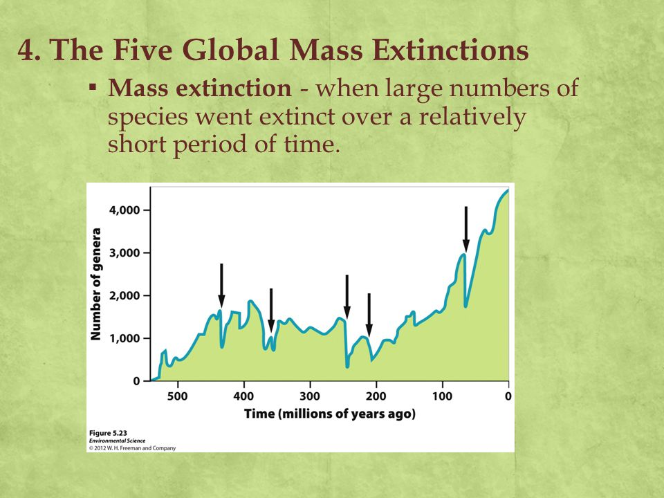 4. The Five Global Mass Extinctions