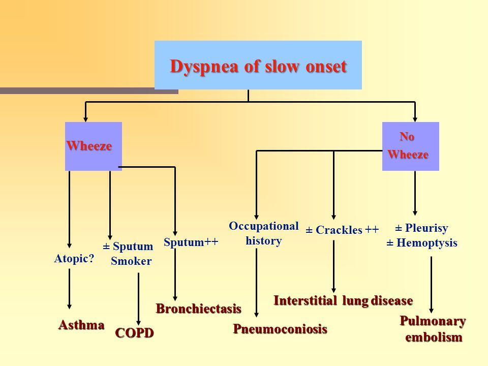 Dyspnea of slow onset Wheeze Interstitial lung disease Bronchiectasis