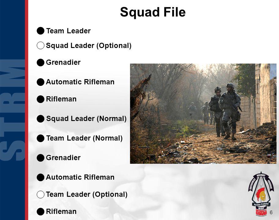 Squad Leader (Optional) Team Leader (Optional)