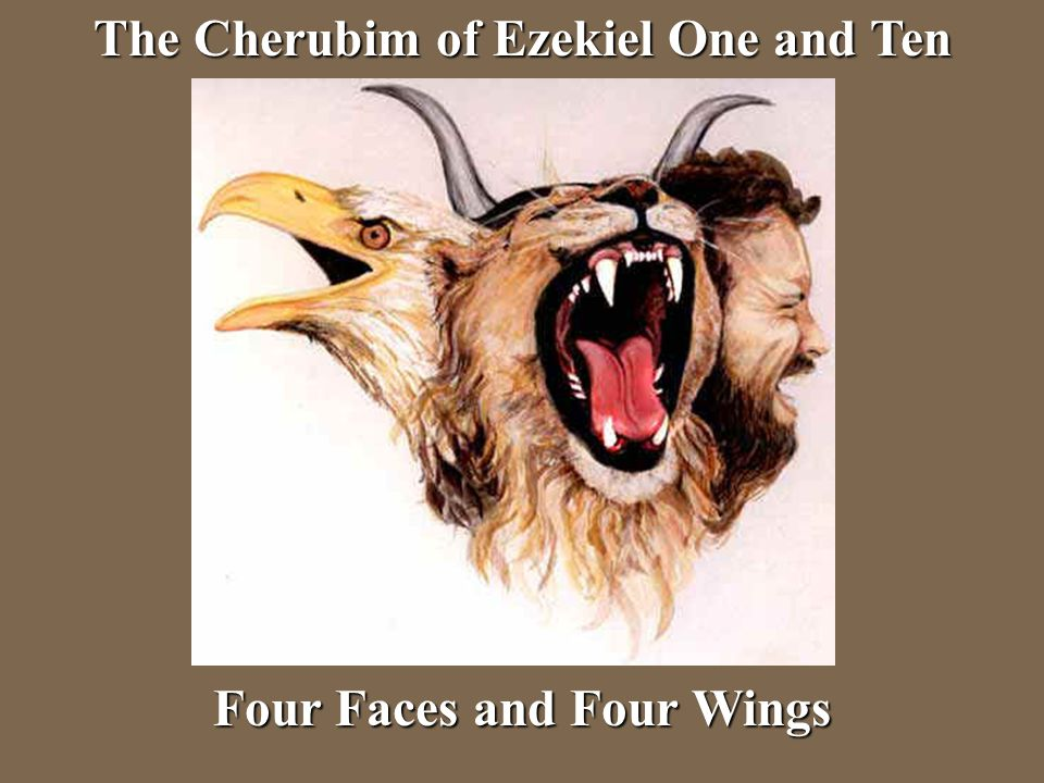The Cherubim of Ezekiel One and Ten Four Faces and Four Wings