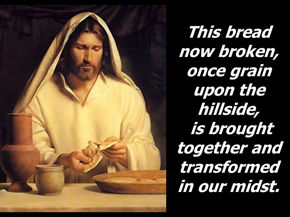 This bread now broken, once grain upon the hillside, is brought together and transformed in our midst.