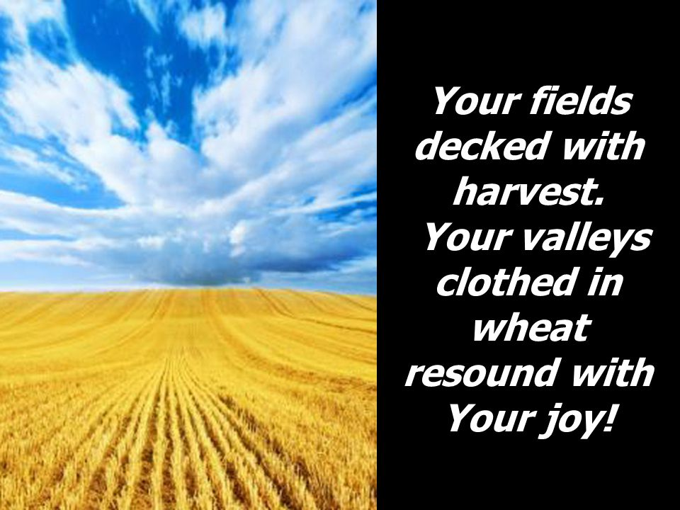 Your fields decked with harvest
