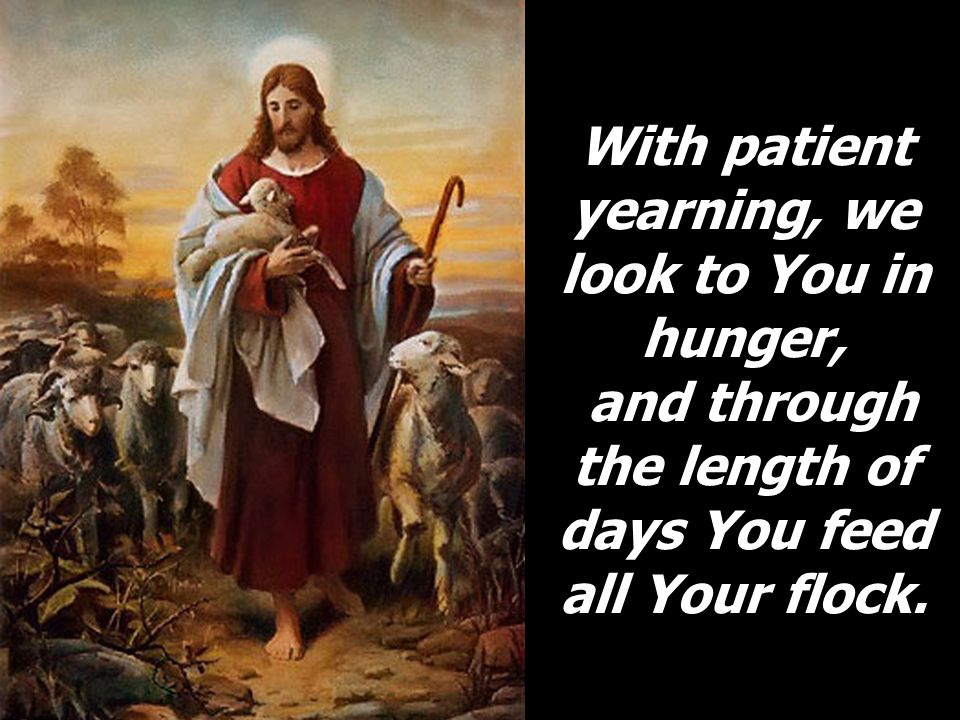 With patient yearning, we look to You in hunger, and through the length of days You feed all Your flock.