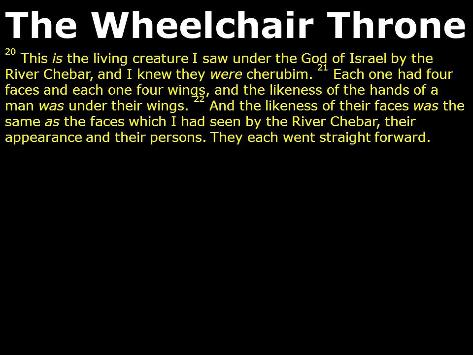 The Wheelchair Throne