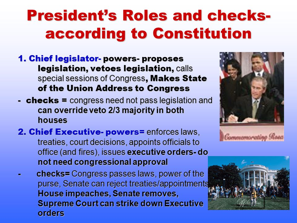 President's Roles and checks- according to Constitution