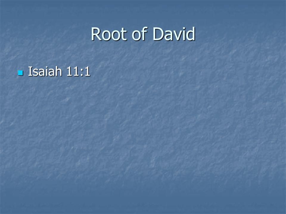 Root of David Isaiah 11:1