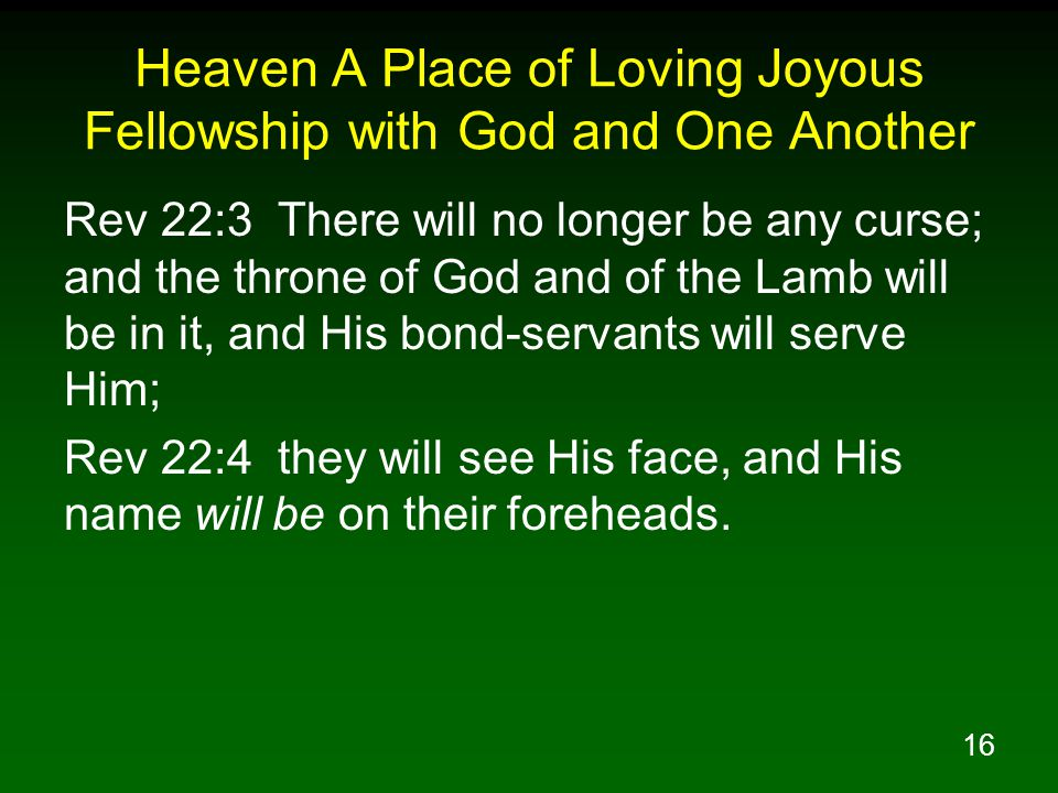 Heaven A Place of Loving Joyous Fellowship with God and One Another