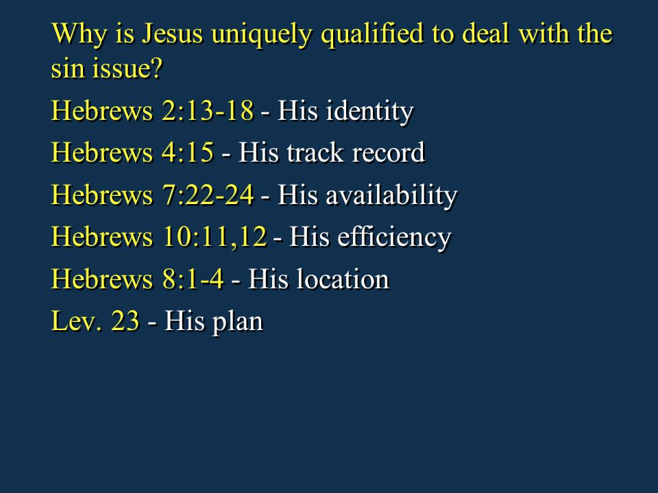 Why is Jesus uniquely qualified to deal with the sin issue