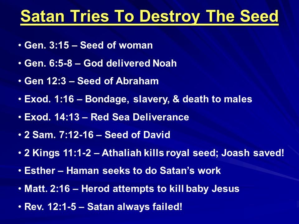 Satan Tries To Destroy The Seed