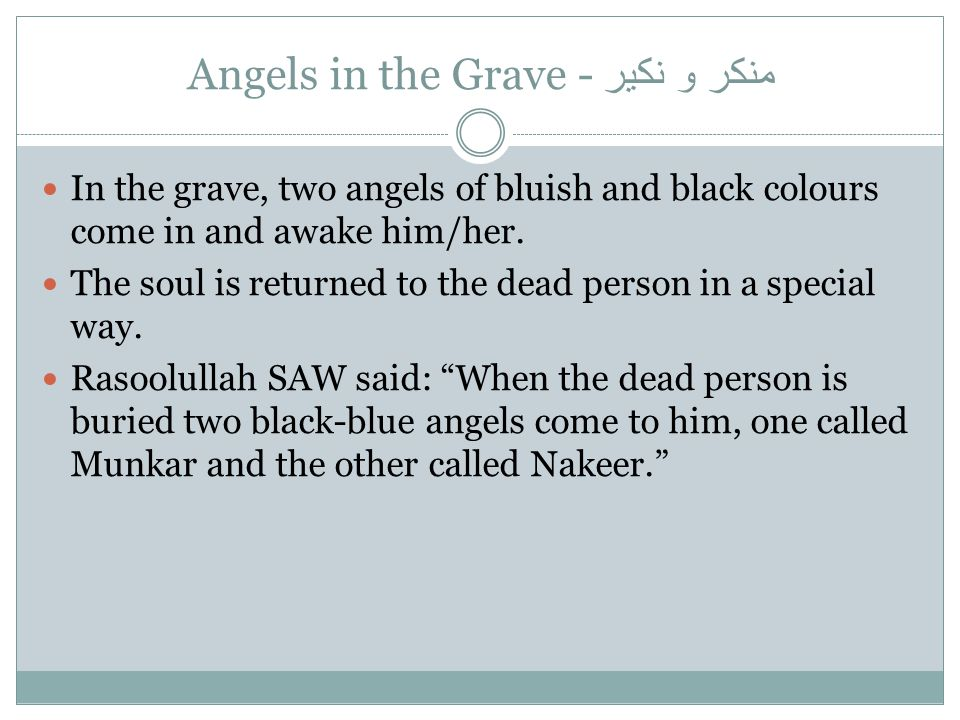 منكر و نكير Angels in the Grave -