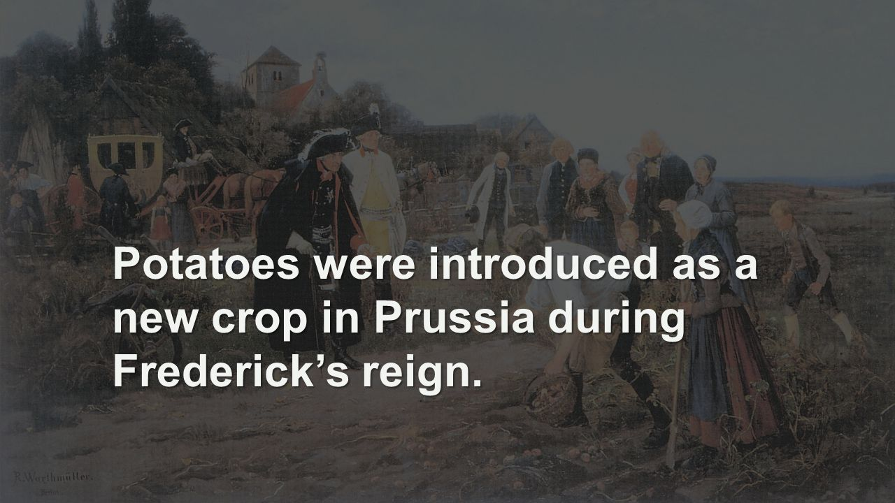 Potatoes were introduced as a new crop in Prussia during Frederick's reign.
