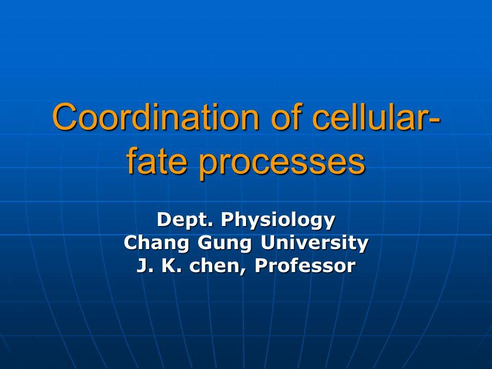 Coordination of cellular-fate processes