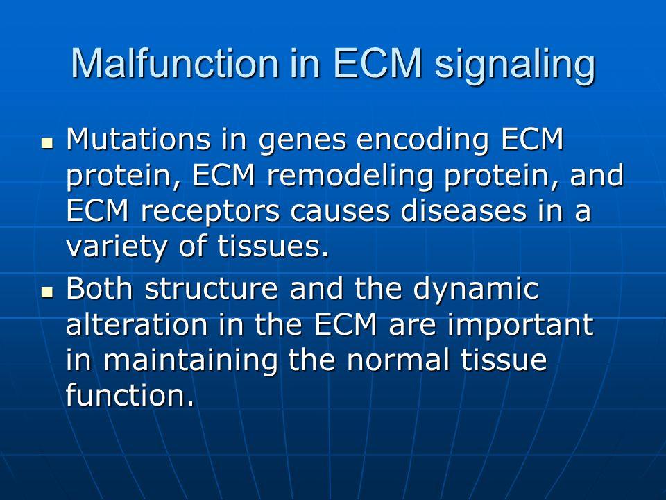 Malfunction in ECM signaling