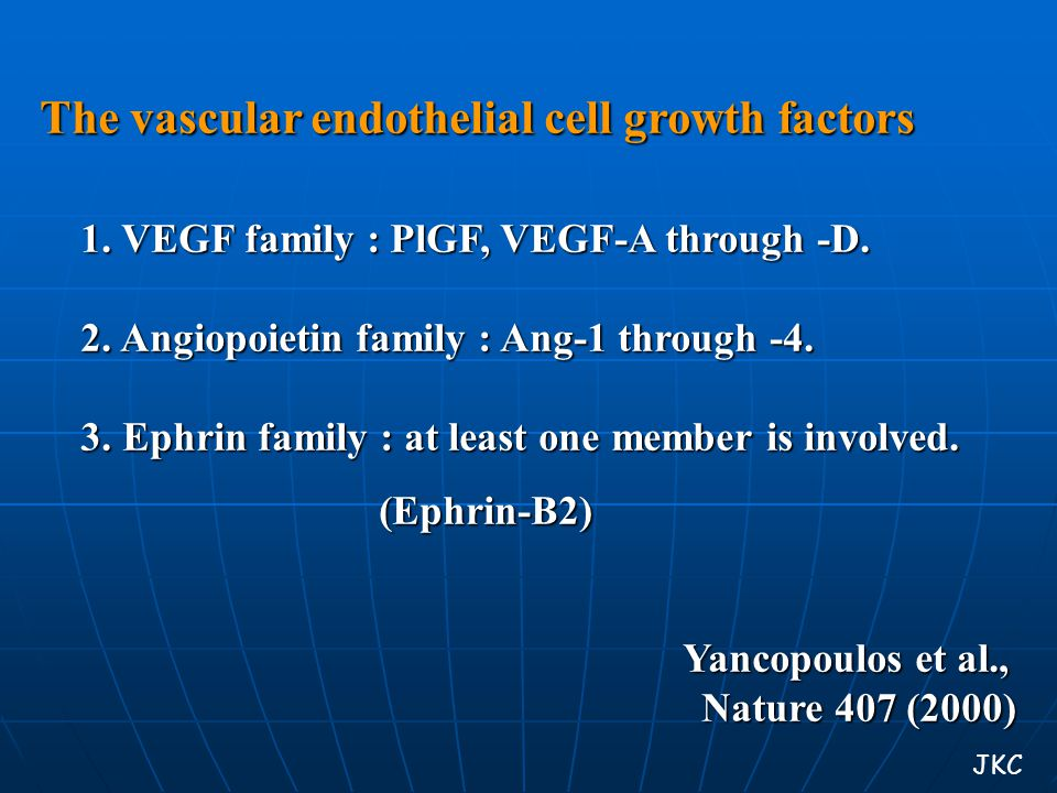 The vascular endothelial cell growth factors