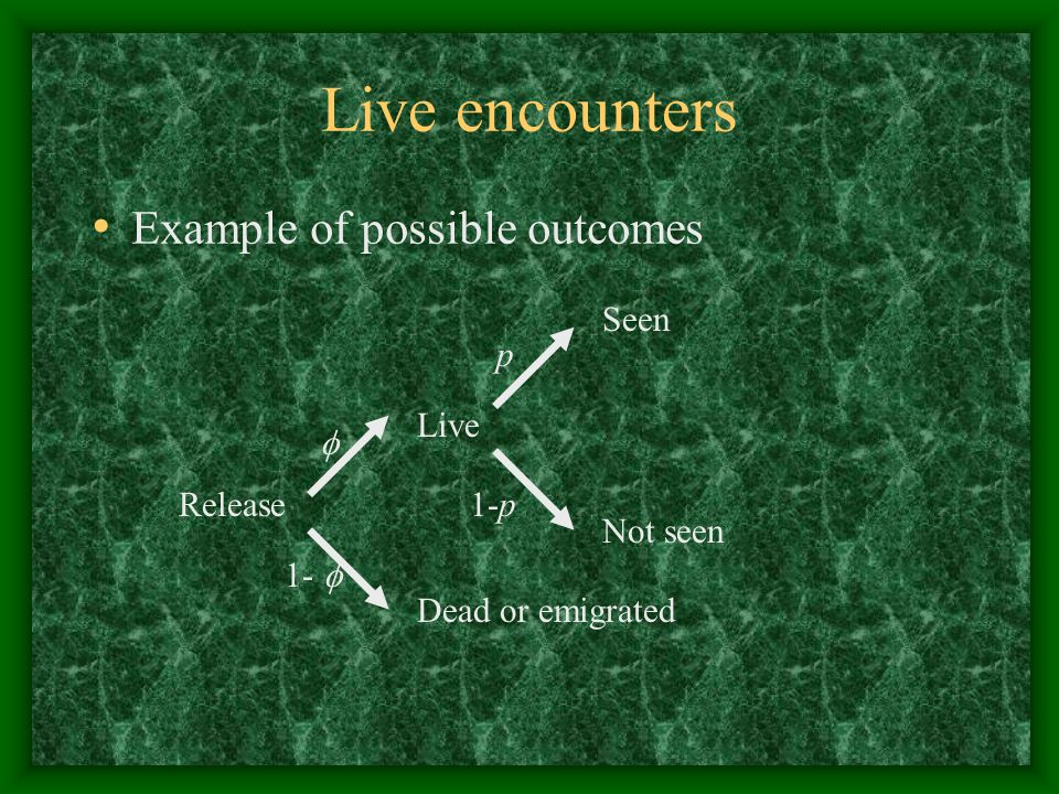 Live encounters Example of possible outcomes Seen Release