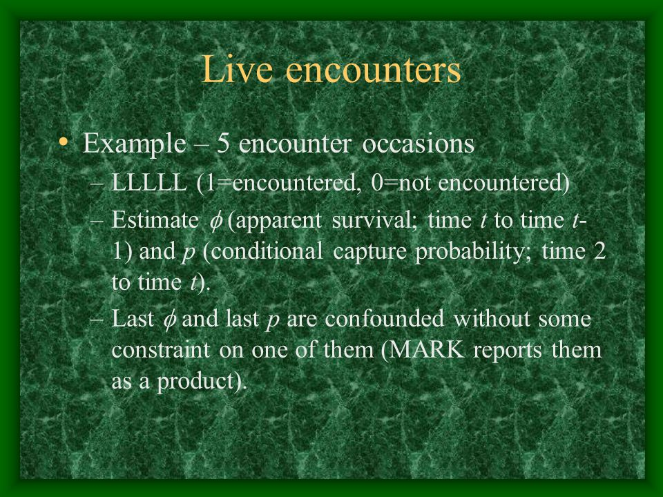 Live encounters Example – 5 encounter occasions
