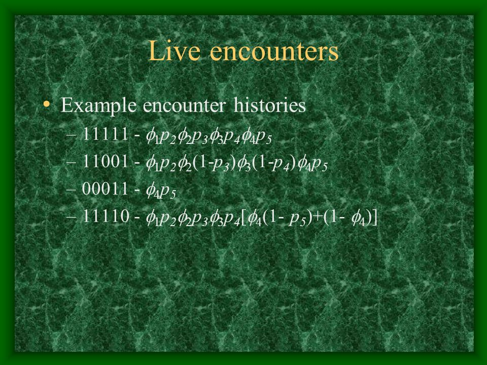 Live encounters Example encounter histories 11111 - 1p22p33p44p5