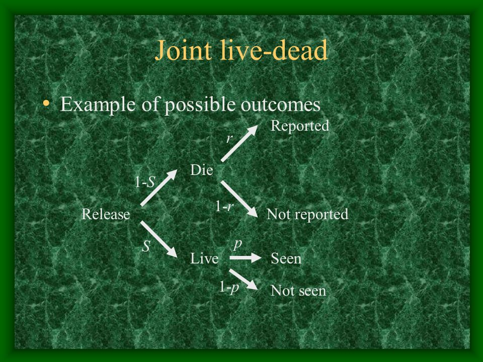 Joint live-dead Example of possible outcomes Release Live Die S 1-S